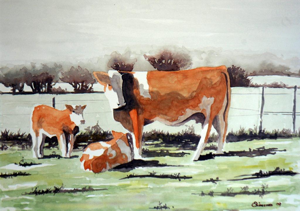 2009 - Mucche al pascolo - 36 x 24 -