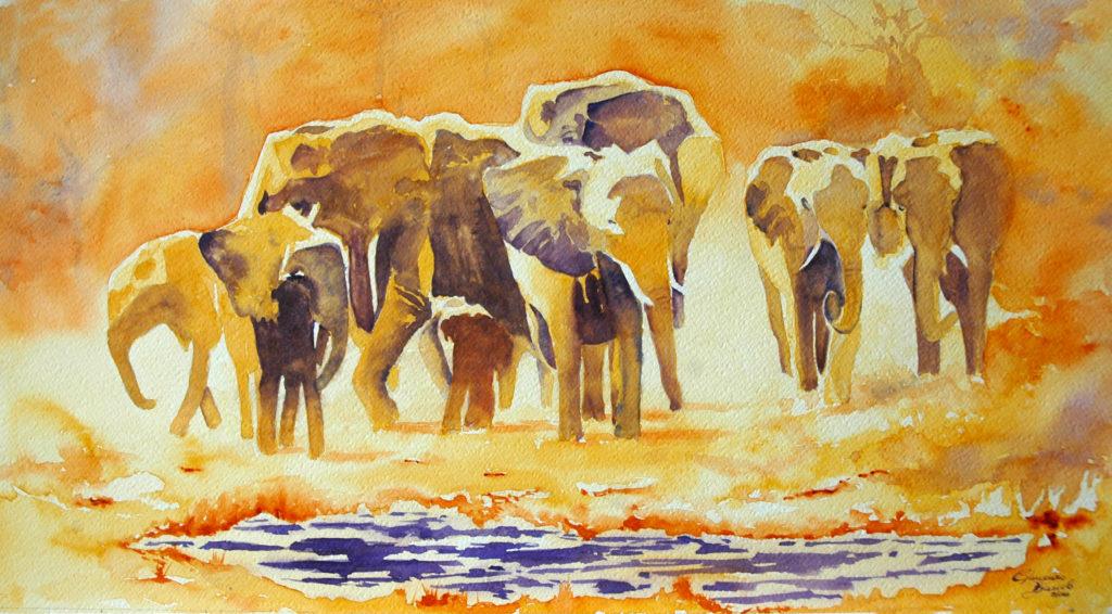 2011 - Elefanti all'abbeverata - Omaggio a sconosciuto - 55 x 30 -