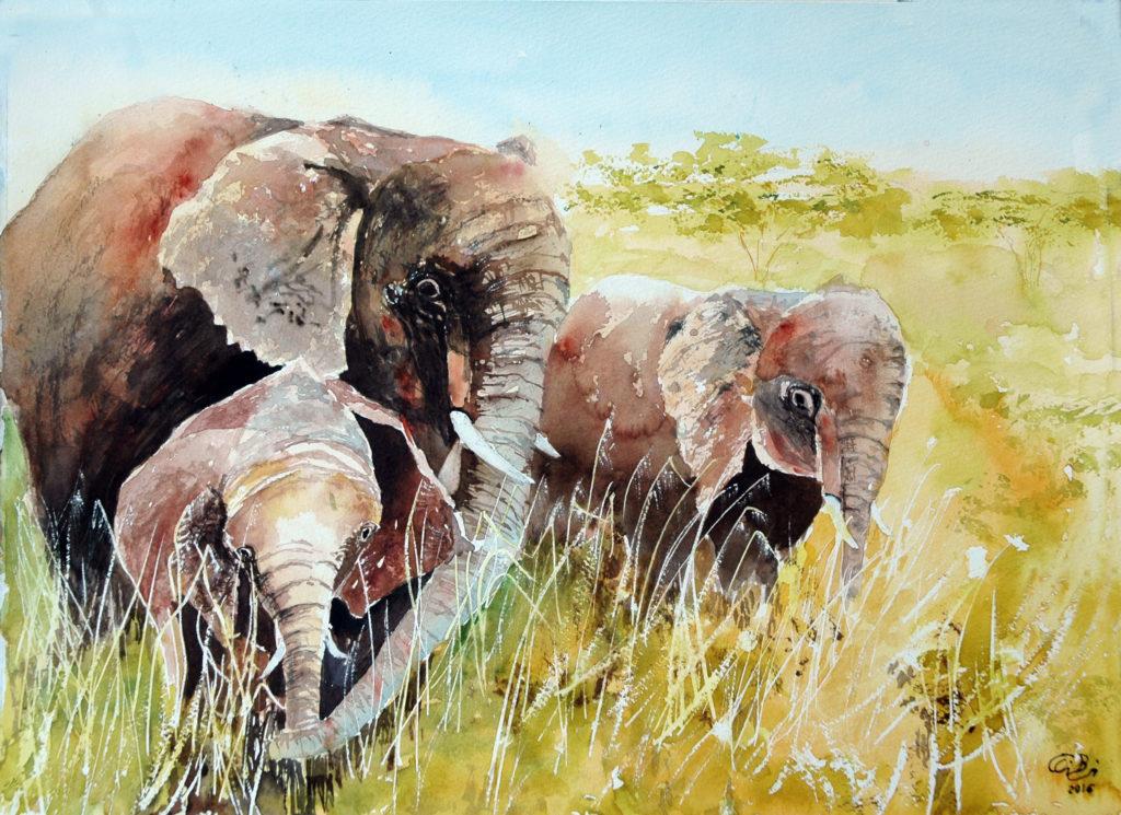 2016 - Elefanti - 38 x 28 - Fabriano 300 gr-
