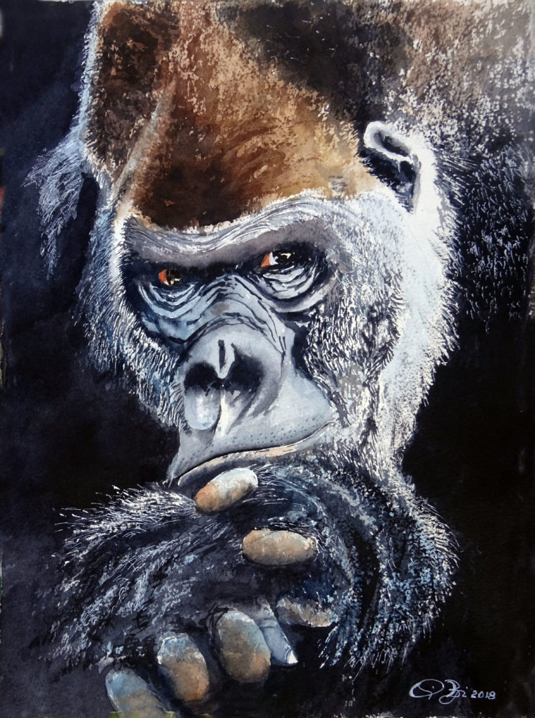2018 - Gorillone n. 2 - 28 x 38 - Arches 300 gr