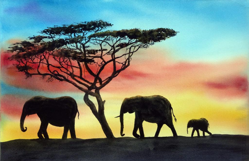 2019 - Elefanti in controluce - 56 x 38 - Sanders 425 gr