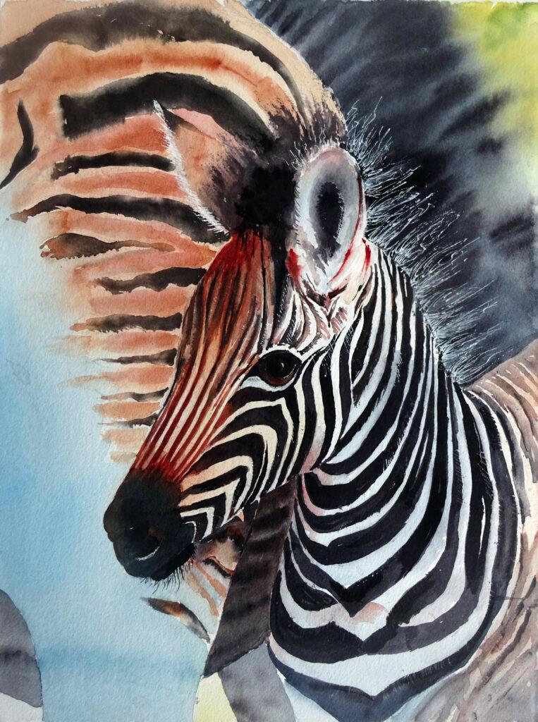 2020 - Piccolo di Zebra - 27 x 38 - W�N 300 gr